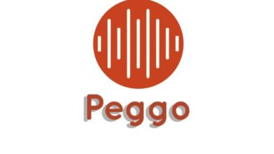 Peggo Free YouTube to MP3 Converter Online 2020 1