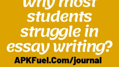 struggle in essay writing