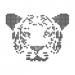 Tiger — Algebra & Maths Solver with Solution